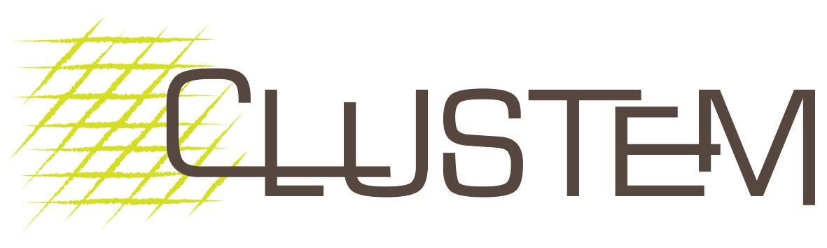 Clustem Logo